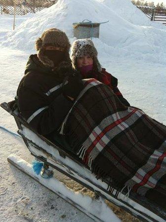 Davvi Arctic Lodge:                   reindeer sleigh
