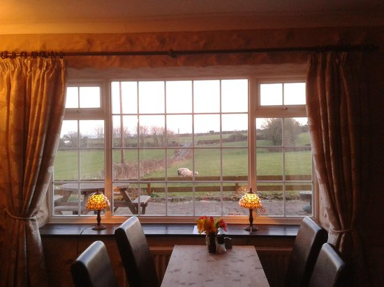 Ty Dderw:                   Dining area with lovely views