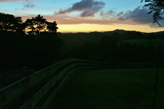 Kauri Villas:                   Sunset view from property