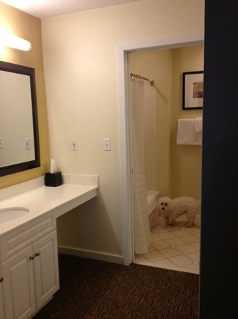 HYATT house Parsippany/Whippany :                                     Bathroom - this place is dog friendly!