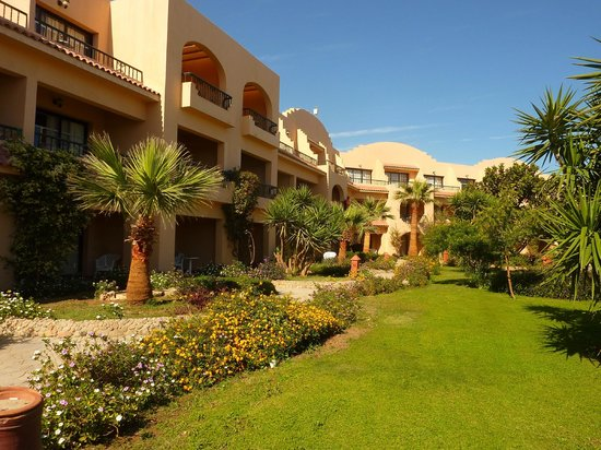 Ali Baba Palace:                   Our room (ground floor) - opposite pool & bar!