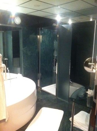 Hilton Madrid Airport:                   washroooom!