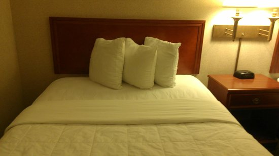Quality Inn & Suites:                   three small pillows you're supposed to sleep on!?