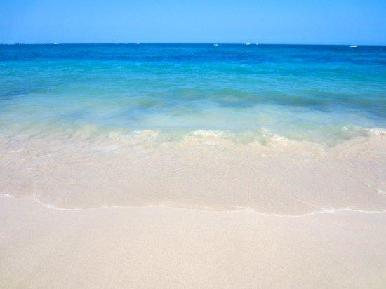 Grand Paradise Playa Dorada :                   beach