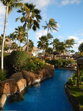 Sheraton Maui Resort & Spa:                                     One of the pools at the Sheraton Maui