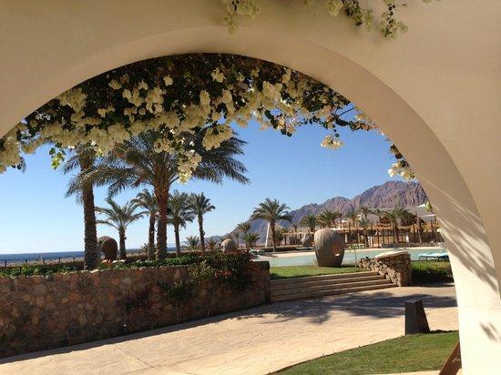 Le Meridien Dahab Resort:                                     view from room