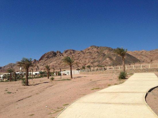 Le Meridien Dahab Resort:                                     view
