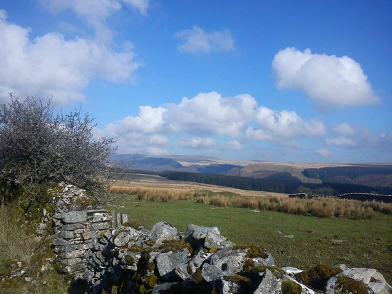 Penrhadw Farm:                                     From the walk that goes up the side of the farm