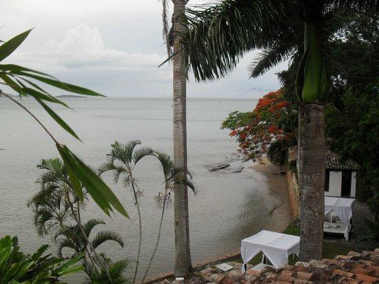 Martin Pescador:                   desde el balcon