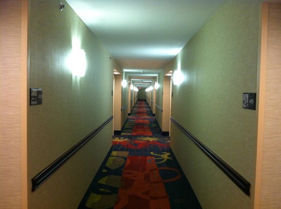Hampton Inn Asheville - Tunnel Road :                   hallway on one of the guest floors