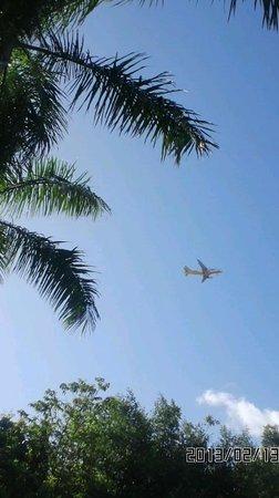 ALTA Cebu Resort:                   デッキチェアーに寝そべってながめたセブの空です