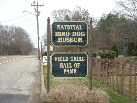 National Bird Dog Museum
