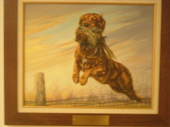 National Bird Dog Museum:                   Golden, do I have to say anymore