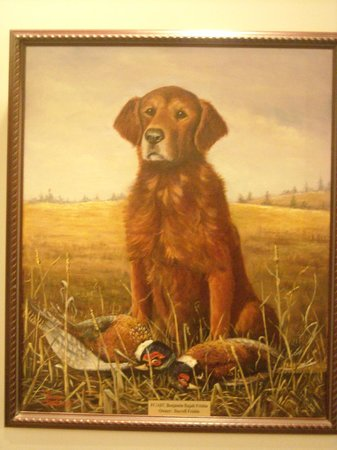 National Bird Dog Museum:                   hall of fame golden