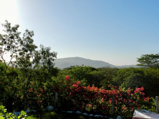 Rancho Los Alpes Ecolodge :                   view from the porch