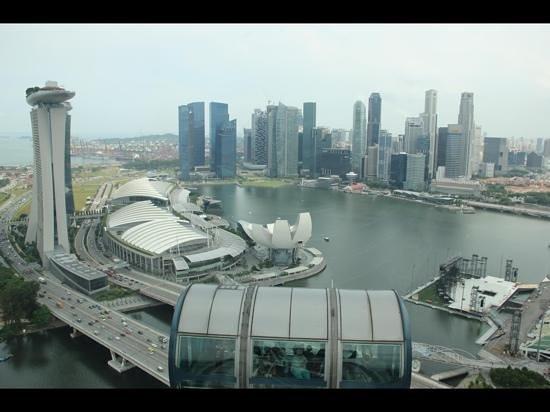 Hotel Nikko Narita:                   Singapore Flyer view