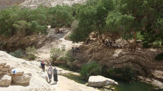 Avdat National Park:                   Pic-nic area on the second level
