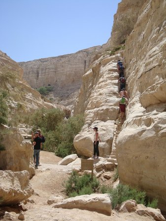 Avdat National Park:                   Stairce between the lower and the second levels