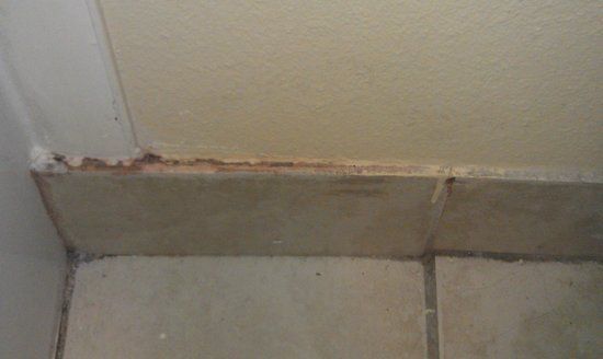 Travelodge Tacoma Near McChord AFB:                   baseboard in bathroom