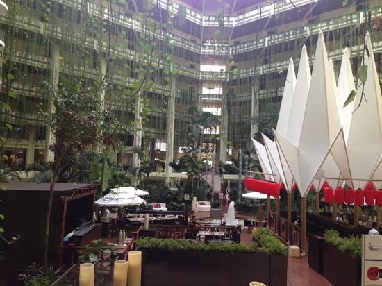 Paradisus Cancun:                   jardim japonês interno                 