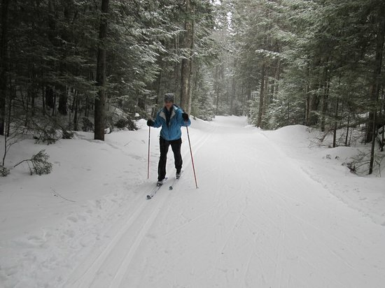 Viking Nordic Center:                   On the trails