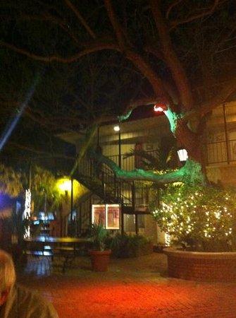 Mi Pueblo:                   the courtyard outside the restaurant
