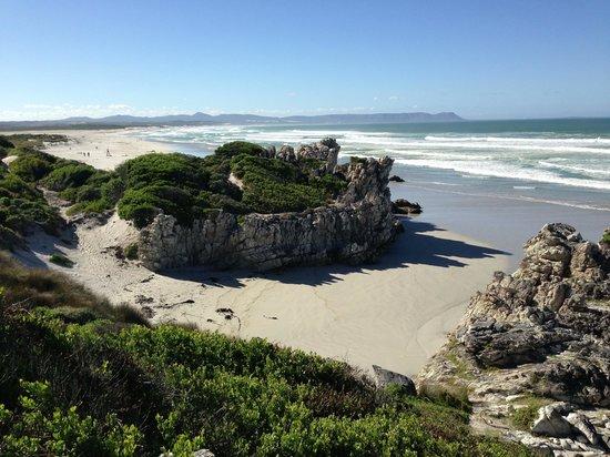 Hermanus Beach Villa:                   Walk to the beach