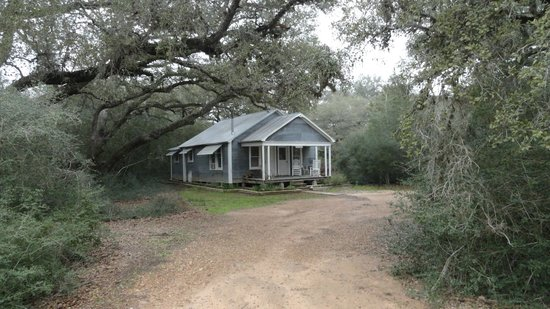 BlissWood Bed and Breakfast Ranch:                   One of the Cabins, nestled in the woods