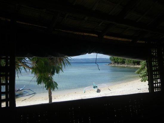Tambaron Green Beach Resort :                   View from bamboo hut