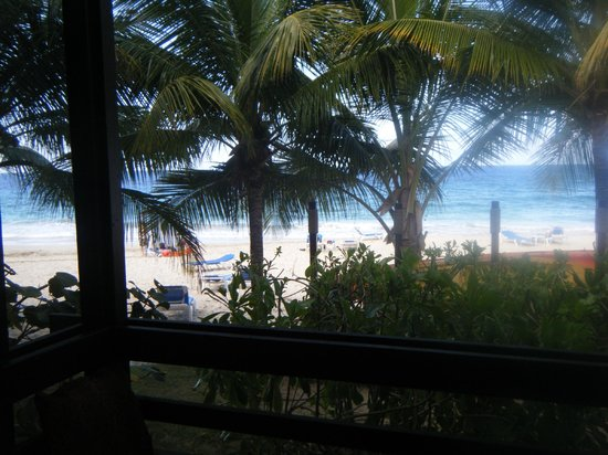 Renaissance St. Croix Carambola Beach Resort & Spa:                                     view of the beach