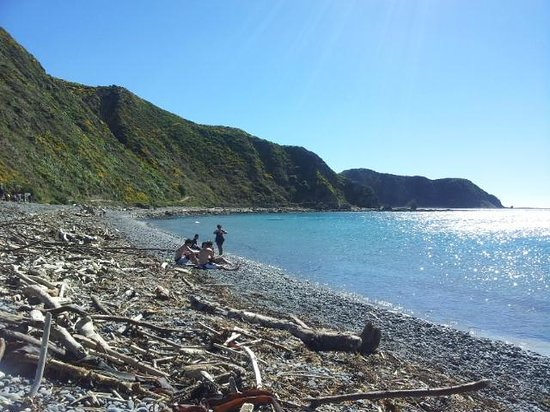 Makara Beach:                   Lovely Shot