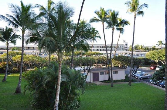 Kihei Akahi:                   View of the Pool from our Lanai