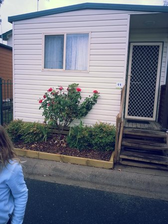 Governors Hill Carapark:                   Cabin Front with the lovely roses
