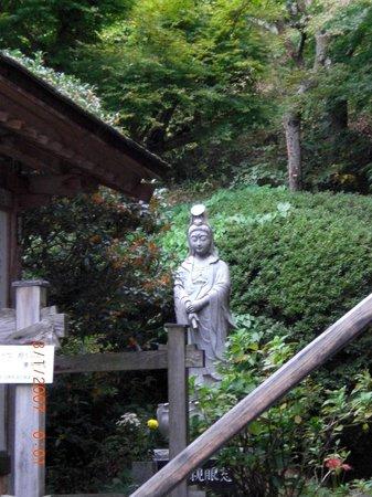 Masuya Ryokan:                   Short walk from Masuya