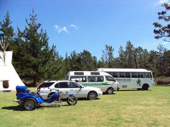 Go Great Barrier Island - Day Tours: The fleet :)