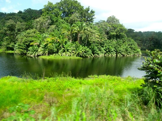 View from Dome Car on Panama Canal Railway