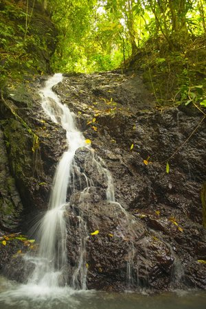 Guaria de Osa Ecolodge:                                                       Little waterfall that can be found on a 20