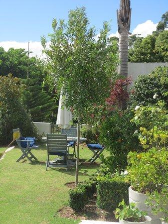 Bed of Roses:                   Garten