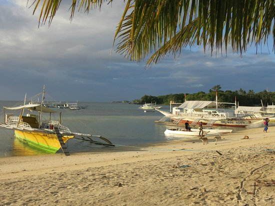 Kokay's Maldito Dive Resort:                   vista dall'ombrellone