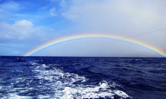 Molokai Fish & Dive Center:                                     Rainbow over the ocean while on a fishing excursion