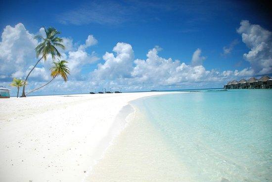 Constance Halaveli:                                                       beach
