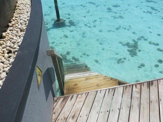 كونستانس هالافيلي مالديفز:                                                       water villa                             