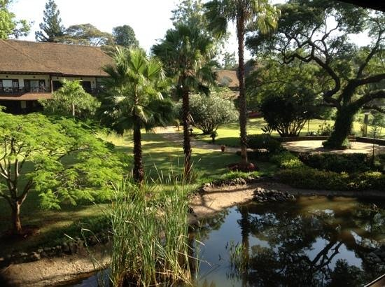 Safari Park Hotel :                   gorgeous gardens view from 853