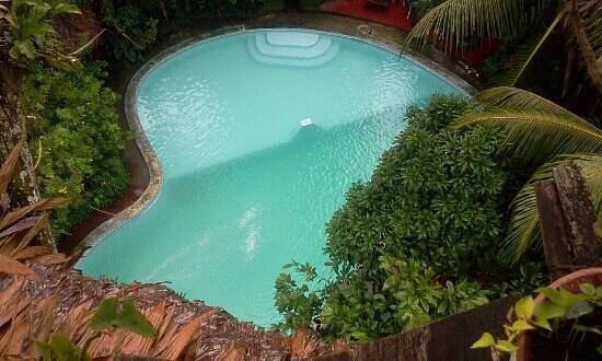La Casa Fitzcarraldo:                                     Pool der Casa Fitzcarraldo vom Baumhaus gesehen