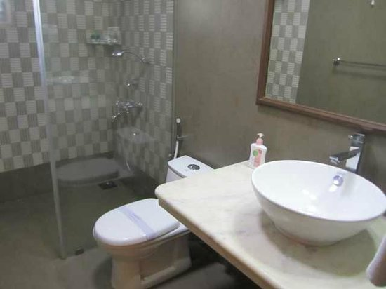 Hanu Reddy Residences,Wallace Garden :                   Washroom interiors