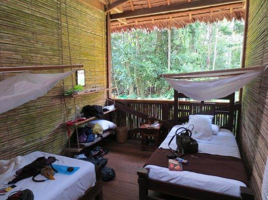 Tambopata Research Center:                   Vårt rum på TRC, djungeln alldeles utanför!