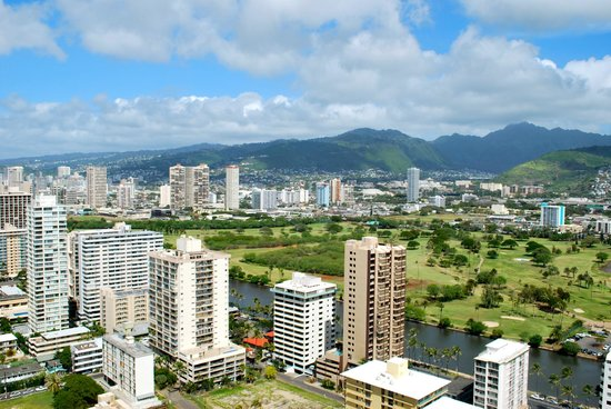 Waikiki Banyan:                   view from the lanai