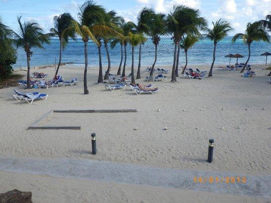 Divi Carina Bay All Inclusive Beach Resort:                   Udsigten fra værelset