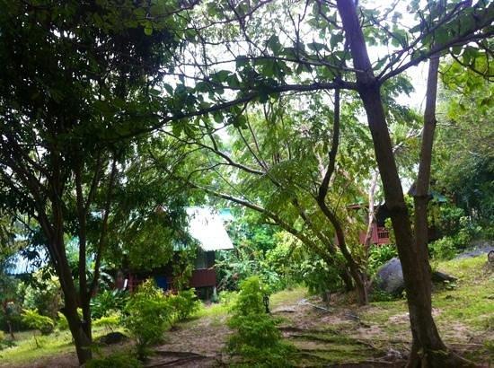 Koh Tao Royal Resort