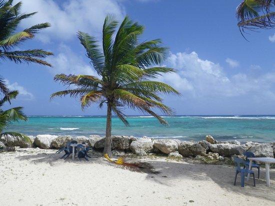 Le Touloulou :                   La plage vue de votre table